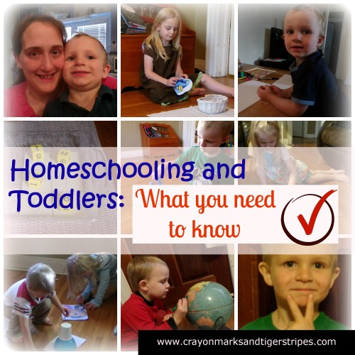 Teaching through the toddler years